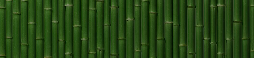 bamboo-background-v2.jpg