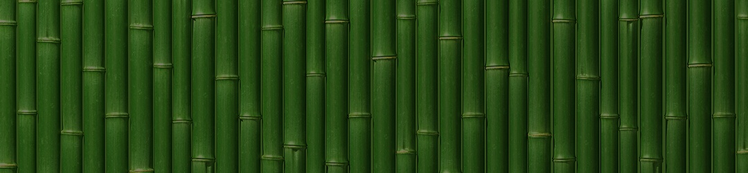 bamboo-background-v2.jpg